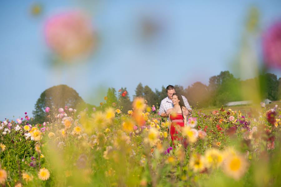 A couple laughs together in a field of dahlia flowers.