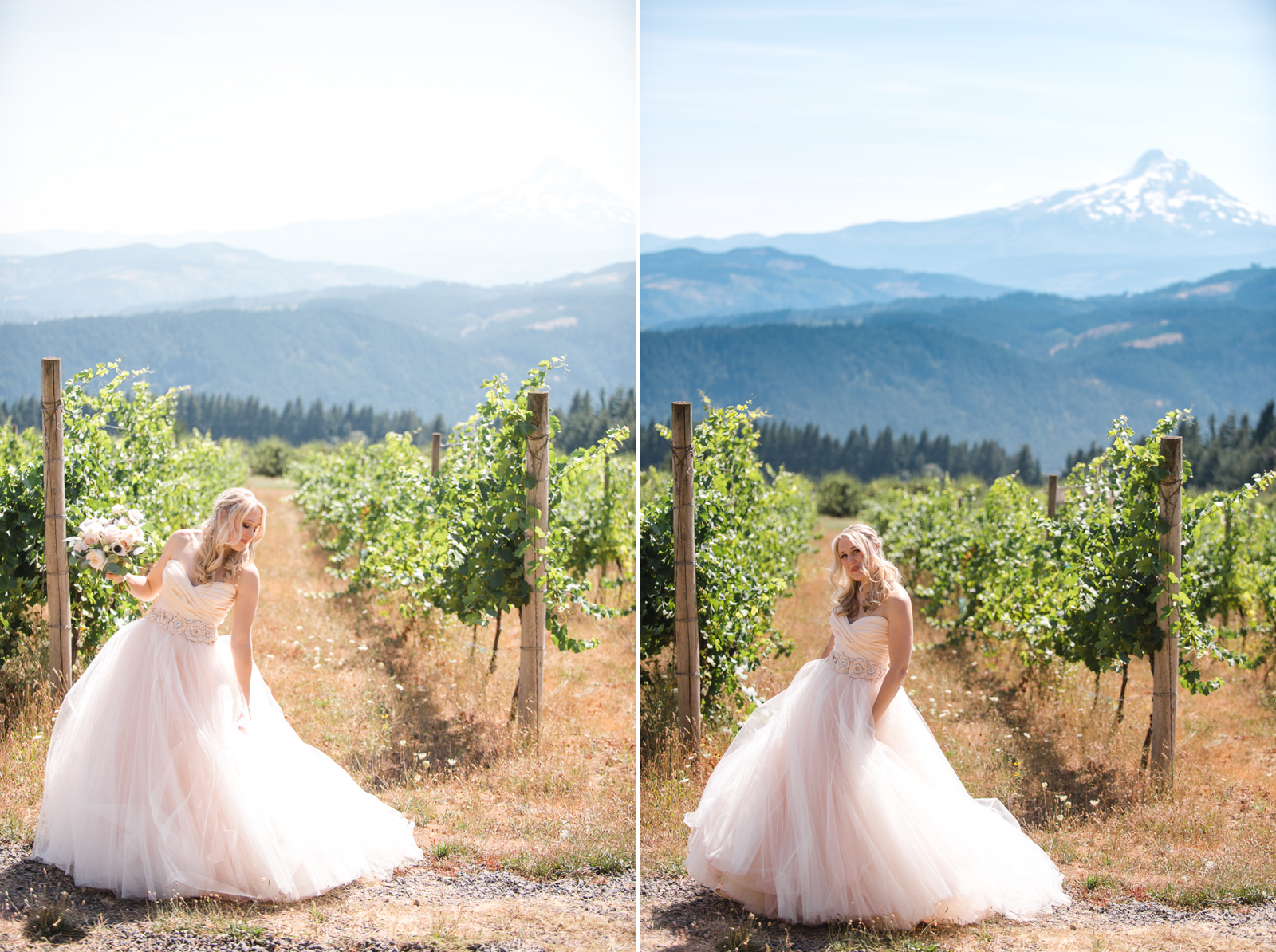025 gorge crest vineyard wedding